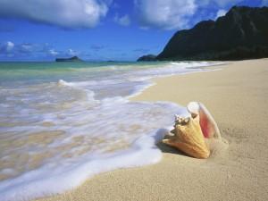 deniz-suyu-neden-tuzludur